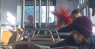 Bus hair